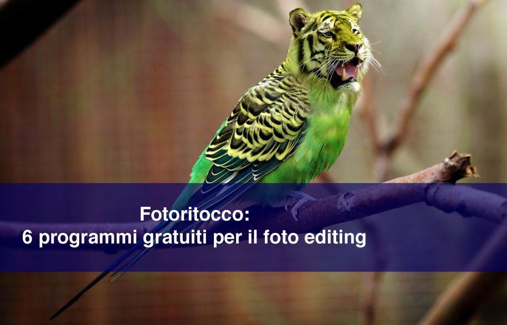 Immagine di copertina dell'articolo Fotoritocco: 6 programmi gratuiti per il foto editing